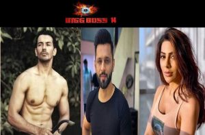 bigg-boss14--abhinav-shukla--become-2nd-finalist-by-win-immunity-task-defeated-nikki-tamboli-_optimized
